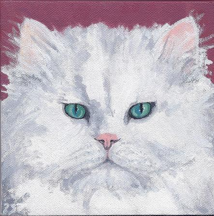 Longhaired Cat Pet Portrait
